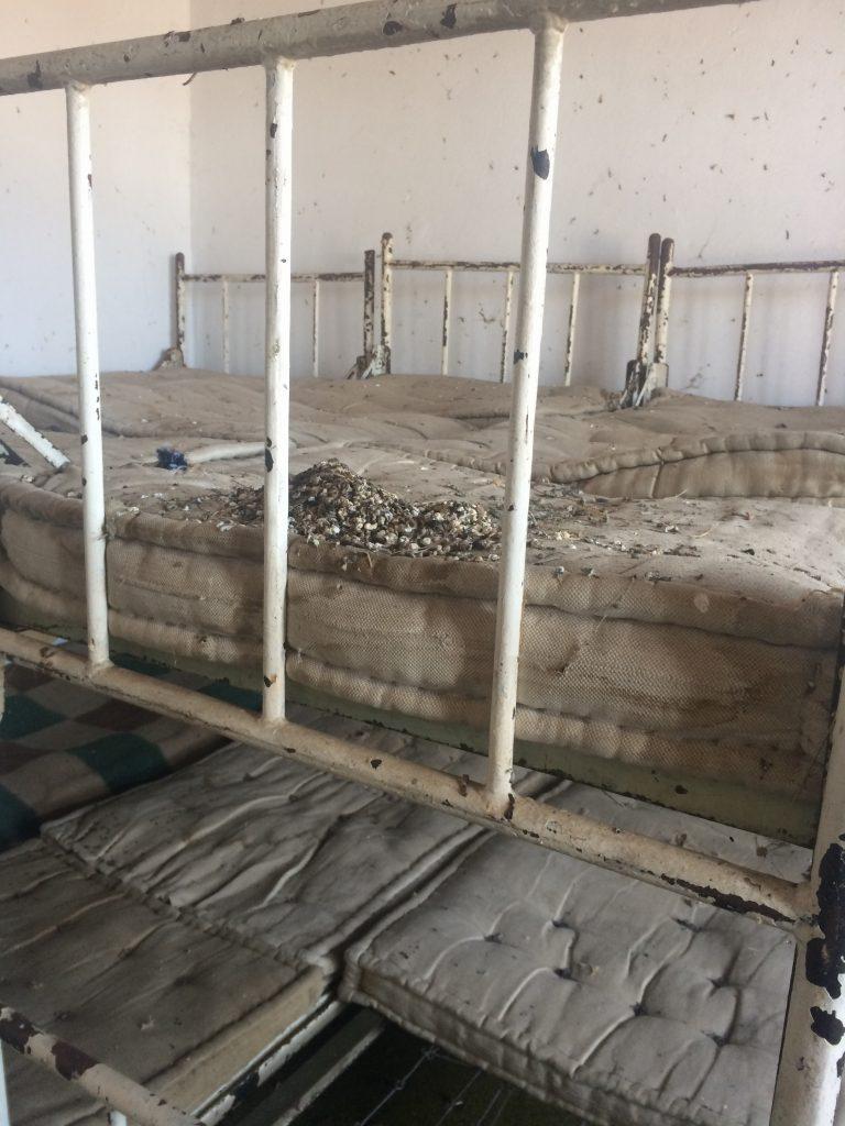 Вода прокиснува од таванот и има измет од птици по душеците од креветите (Фото: СДК.МК)