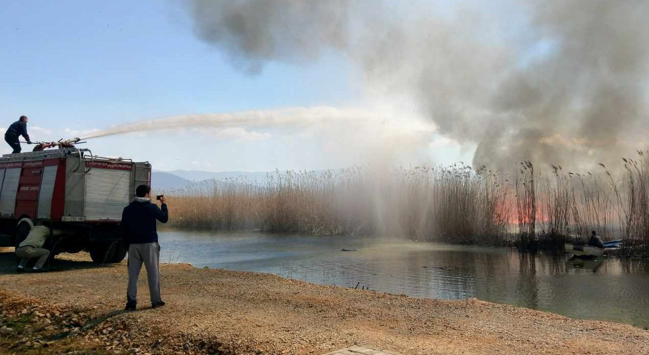 Пожар во струшко, изгоре трска на патот кон Калишта